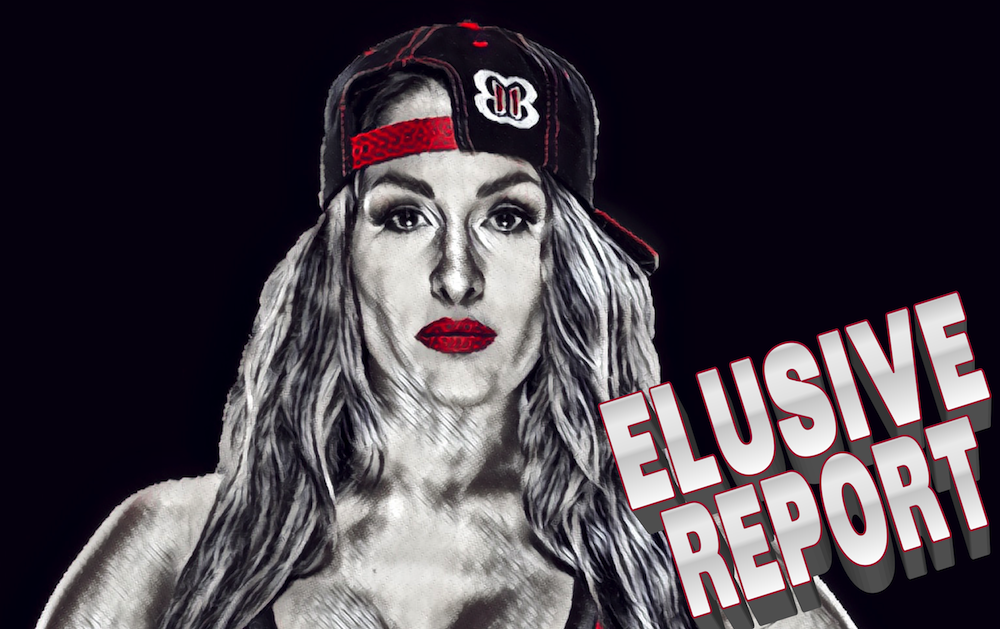 Nikki Bella Retirement